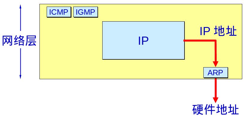 在实践中深入理解ARP协议