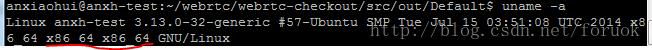 查看Linux系统/文件是32位还是64位